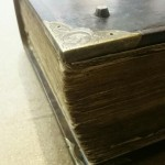 Calf Skin Bible Repair