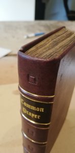 Calf Skin Book Repair